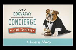 Dog Concierge