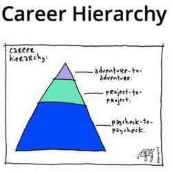 Career hierarchy