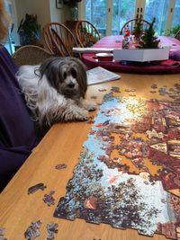 Chico puzzle