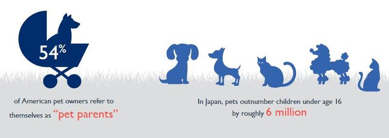 Ford Pet Trends