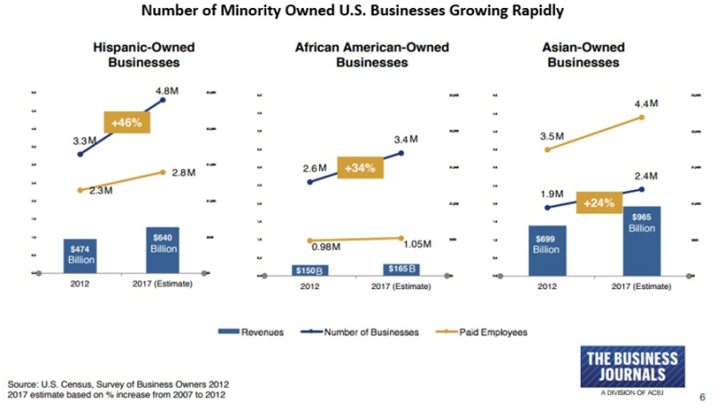 Minority owned smbs 2