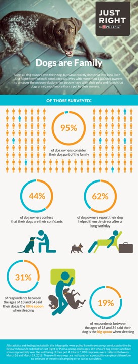 Purina dog infographic